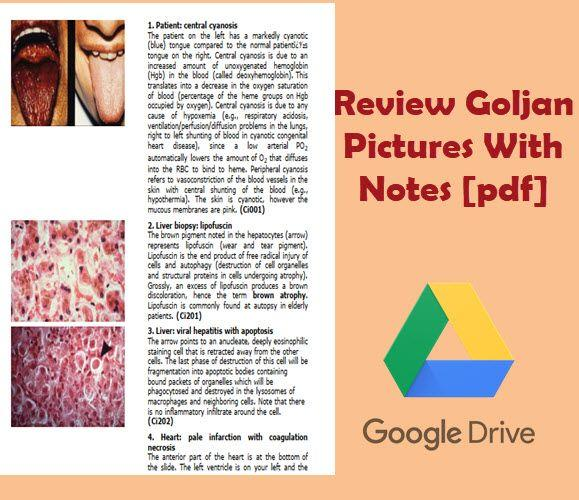Review Goljan Pictures With Notes [pdf]