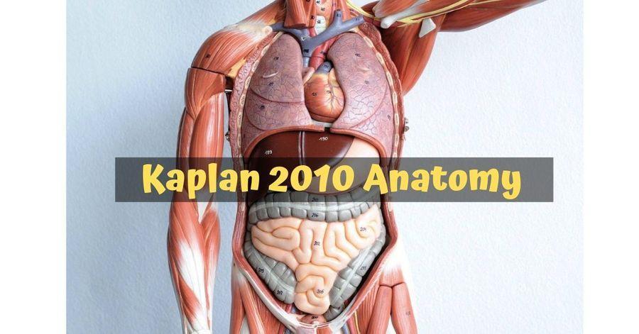 Kaplan 2010 Anatomy